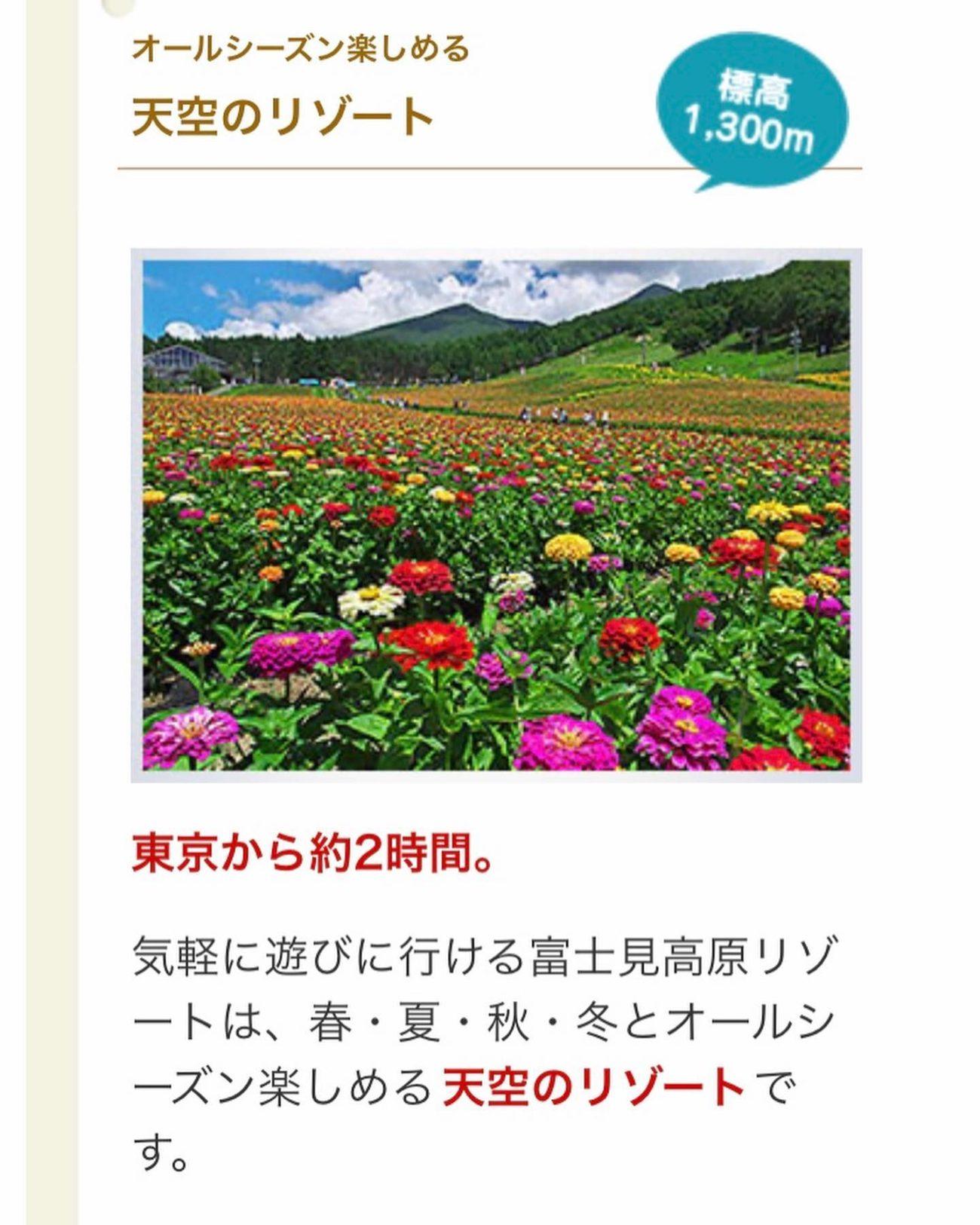 アビエス2020パートナー紹介-富士見高原リゾート-アクセス